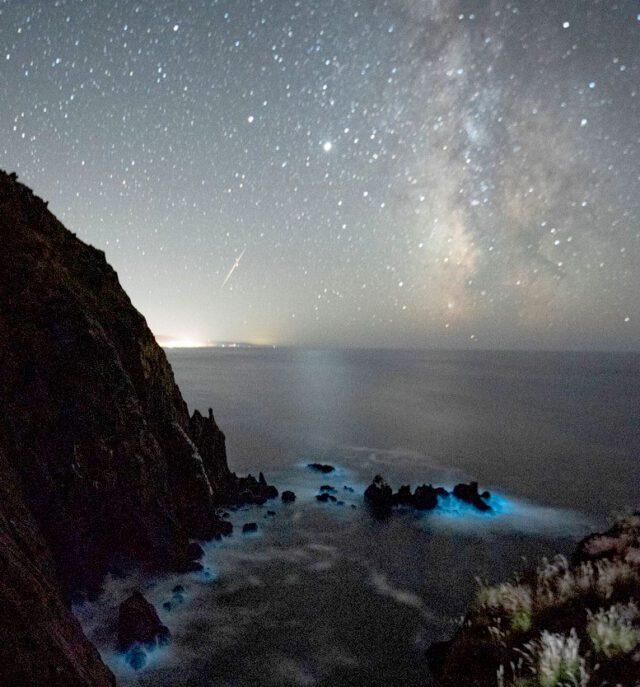 Grant's Getaways glowing beaches 2021 09